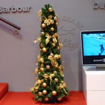 P1000024-Rudolphi